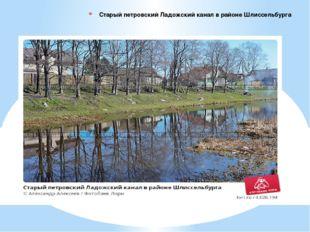 Старый петровский Ладожский канал в районе Шлиссельбурга