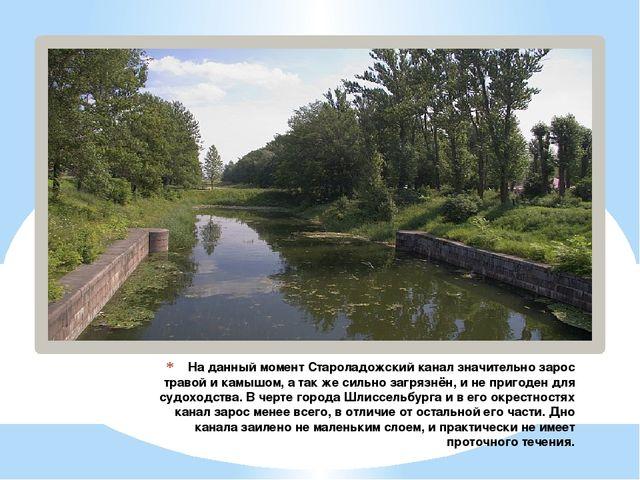 На данный момент Староладожский канал значительно зарос травой и камышом, а т...