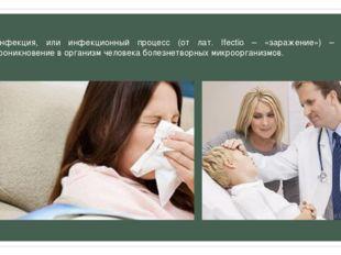Инфекция, или инфекционный процесс (от лат. Ifectio – «заражение») – это прон