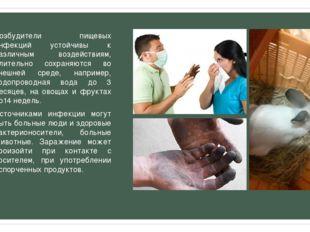 Возбудители пищевых инфекций устойчивы к различным воздействиям, длительно со