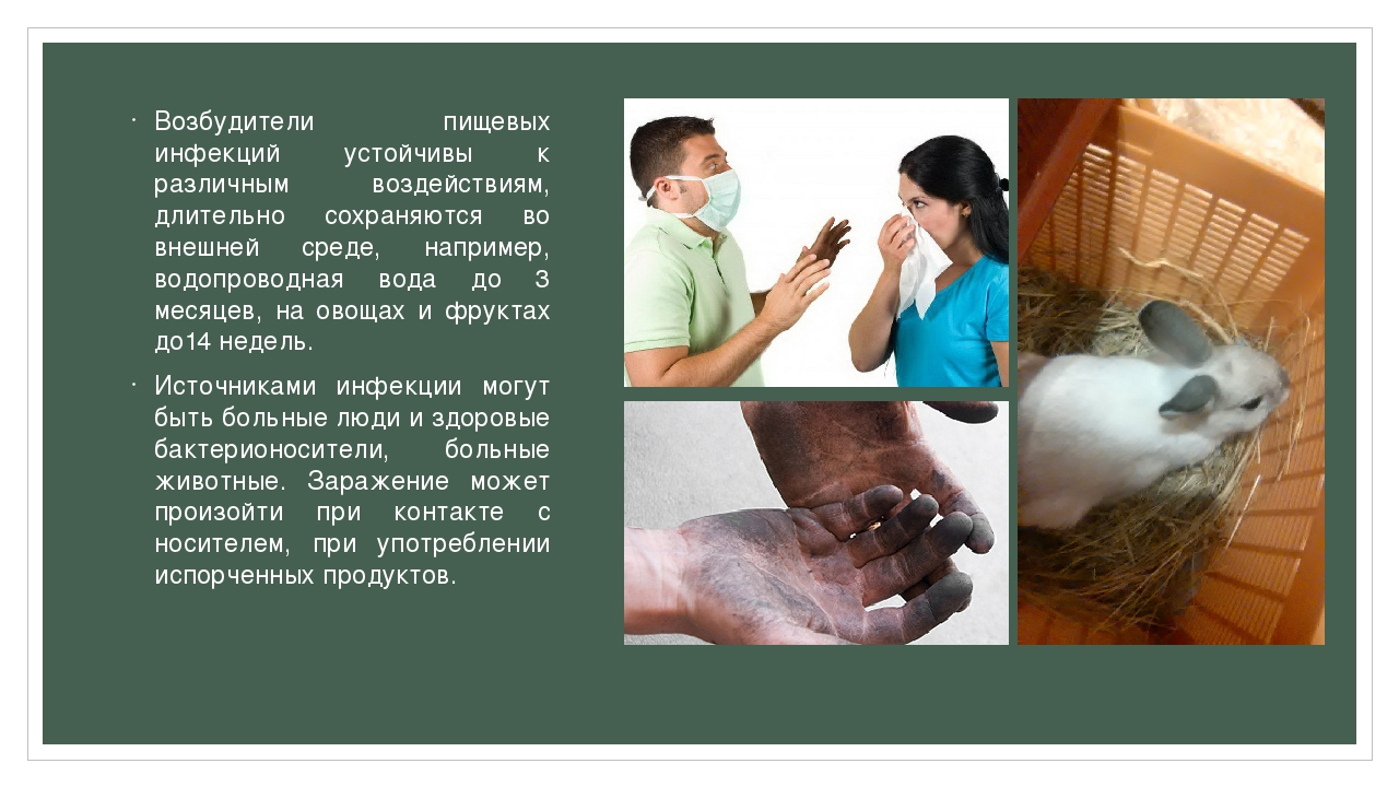 Возбудители пищевых инфекций устойчивы к различным воздействиям, длительно со...