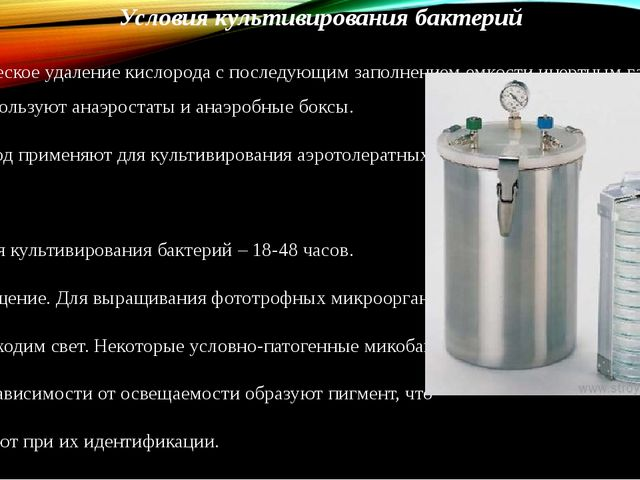 Условия культивирования бактерий Механическое удаление кислорода с последующи...
