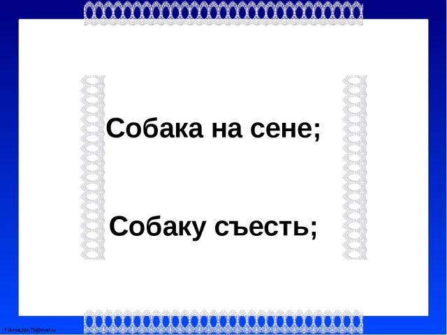 Собака на сене; Собаку съесть; FokinaLida.75@mail.ru