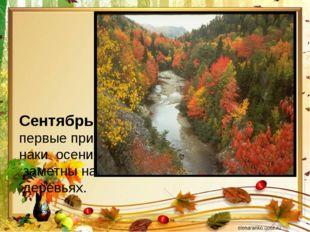 Сентябрь- первые приз- наки осени заметны на деревьях.