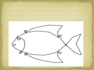 Соединить отдельные детали каркаса рыбы в местах соприкосновения тонкой про
