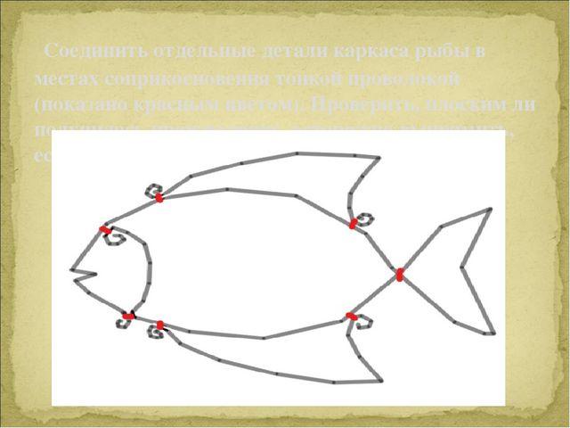 Соединить отдельные детали каркаса рыбы в местах соприкосновения тонкой про...