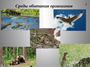 Среды обитания организмов 2