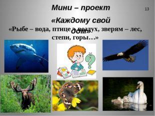 Мини – проект «Каждому свой дом» «Рыбе – вода, птице – воздух, зверям – лес,