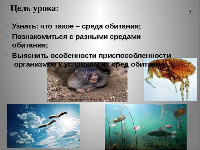Цель урока: Узнать: что такое – среда обитания; Познакомиться с разными среда...