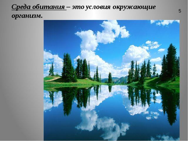 Среда обитания – это условия окружающие организм. 5