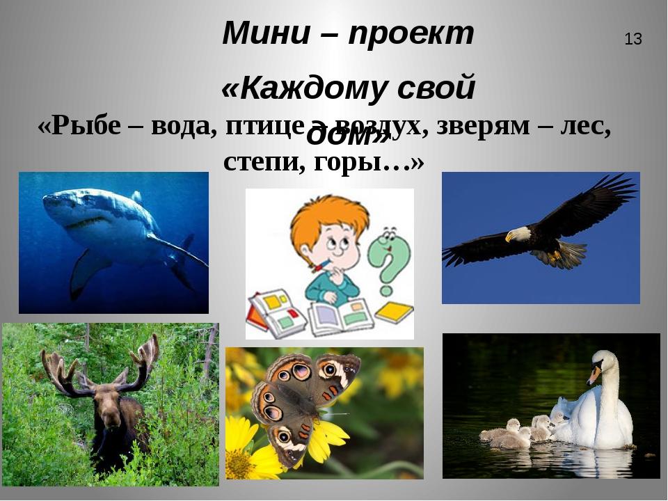 Мини – проект «Каждому свой дом» «Рыбе – вода, птице – воздух, зверям – лес,...