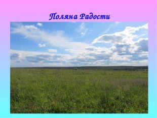 Поляна Радости