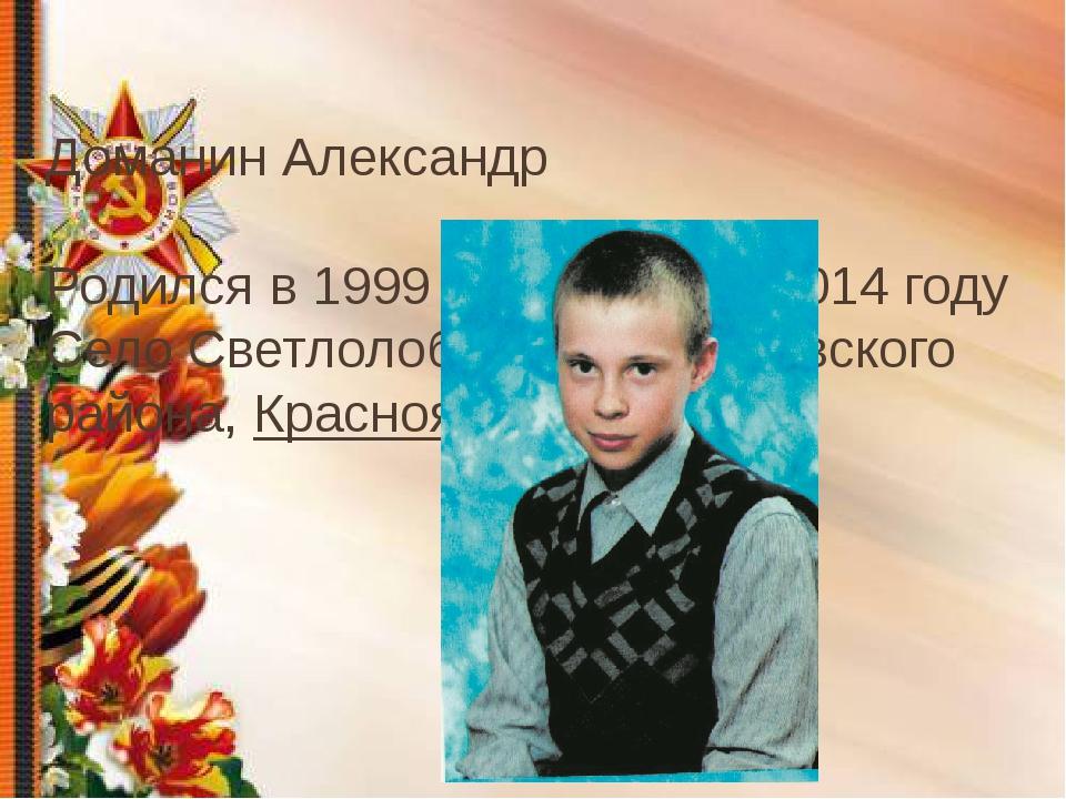 Доманин Александр Родился в 1999 году Погиб в 2014 году Село Светлолобово Но...