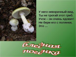 У него невзрачный вид, Ты не трогай этот гриб. Учти – он очень ядовит! Не бер