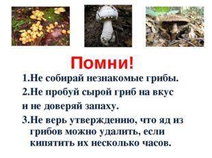 Помни! 1.Не собирай незнакомые грибы. 2.Не пробуй сырой гриб на вкус и не дов