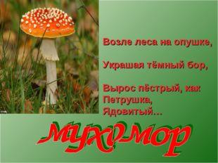 Возле леса на опушке, Украшая тёмный бор, Вырос пёстрый, как Петрушка, Ядовит