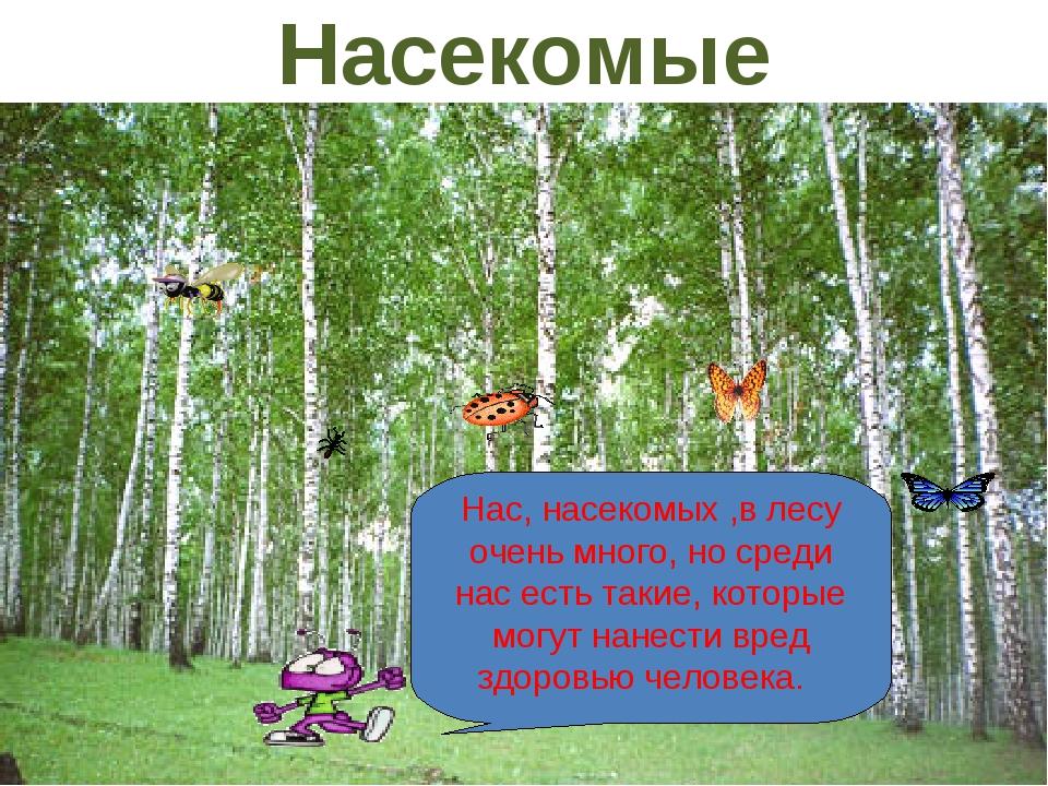 Нас, насекомых ,в лесу очень много, но среди нас есть такие, которые могут на...