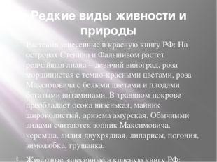 Редкие виды живности и природы Растения занесенные в красную книгу РФ: На ост