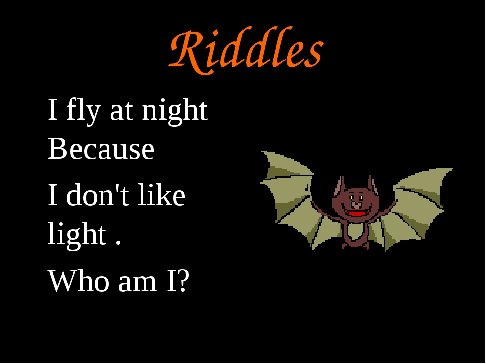 Riddles I fly at night Because I don't like light . Who am I?