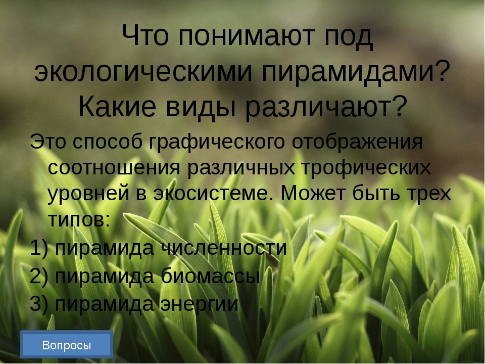 Объясните принцип Гаузе. Принцип Гаузе утверждает, что два вида не могут ус...