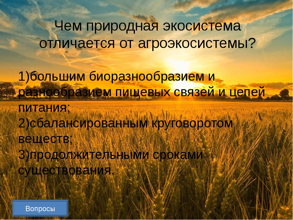 Вопросы Составьте пищевую цепь Растительные соки тля  божья коровка паук ...