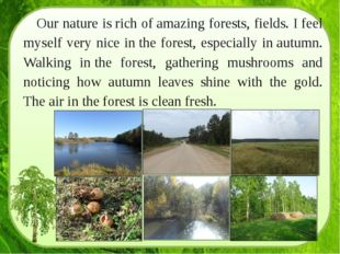 Our nature is rich of amazing forests, fields. I feel myself very nice in the