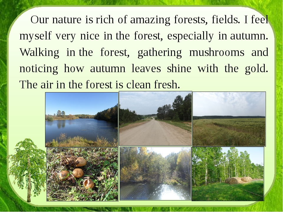 Our nature is rich of amazing forests, fields. I feel myself very nice in the...