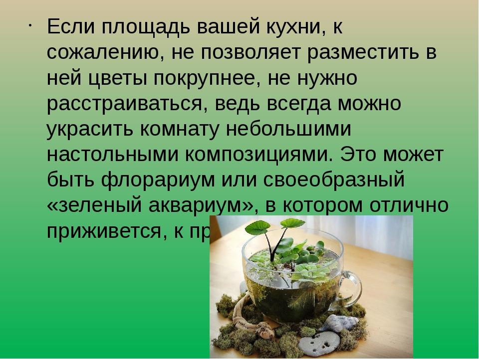 Если площадь вашей кухни, к сожалению, не позволяет разместить в ней цветы п...