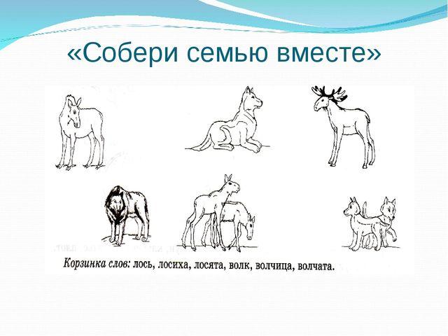 «Собери семью вместе»