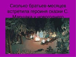 Сколько братьев-месяцев встретила героиня сказки С. Маршака у новогоднего кос