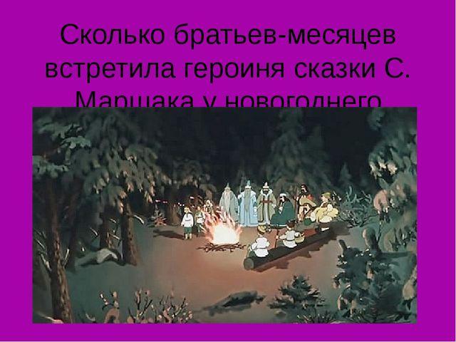 Сколько братьев-месяцев встретила героиня сказки С. Маршака у новогоднего кос...