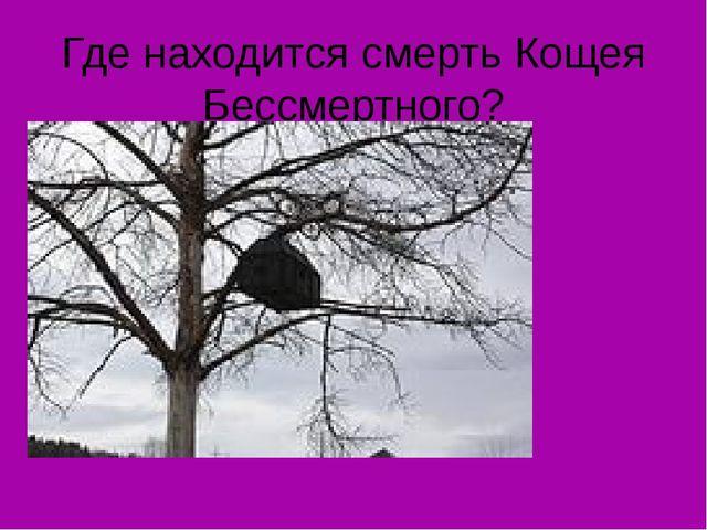 Где находится смерть Кощея Бессмертного?