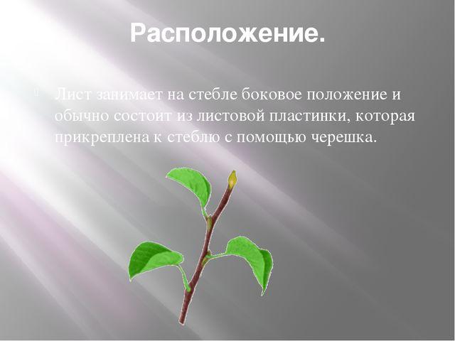 Расположение. Лист занимает на стебле боковое положение и обычно состоит из л...