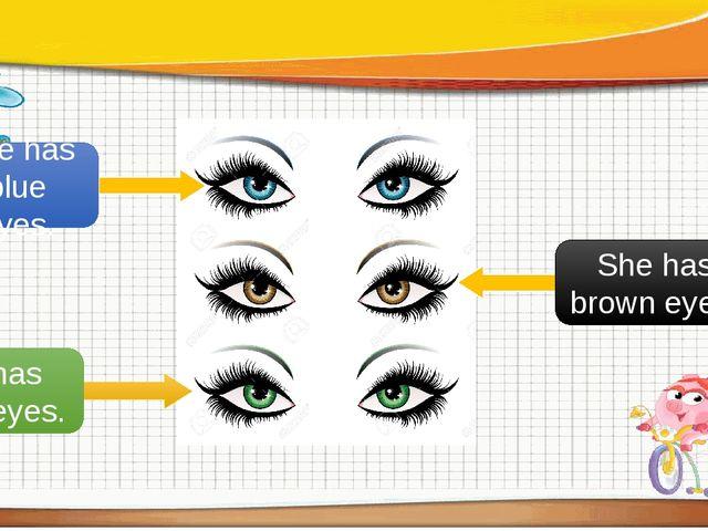 She has blue eyes. She has brown eyes. She has green eyes.