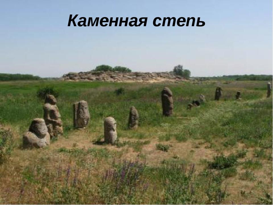 Каменная степь