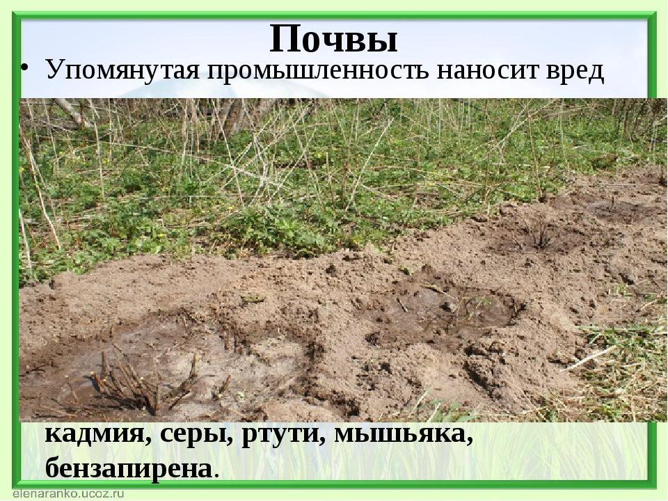 Почвы Упомянутая промышленность наносит вред не только воздуху, но и земельны...