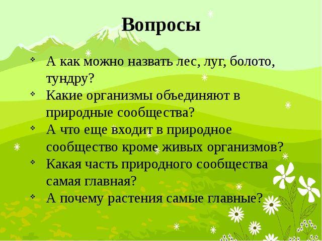 Вопросы А как можно назвать лес, луг, болото, тундру? Какие организмы объедин...