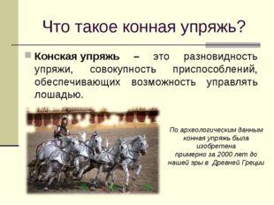 Что такое конная упряжь? Конскаяупряжь – это разновидность упряжи, совокупно