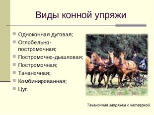 Виды конной упряжи Одноконная дуговая; Оглобельно-постромочная; Постромочно-д