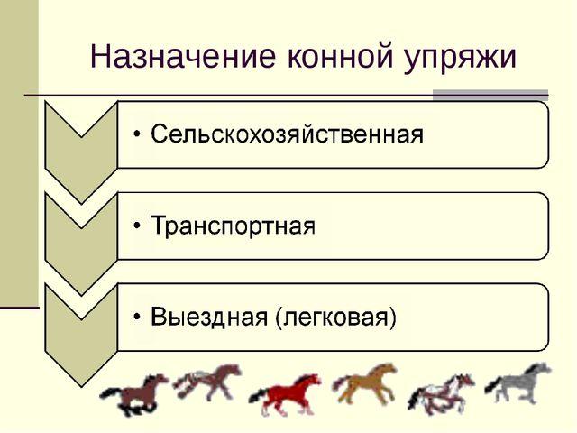 Назначение конной упряжи