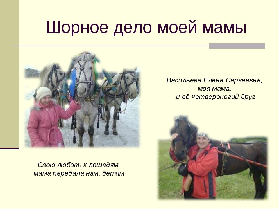 Шорное дело моей мамы Васильева Елена Сергеевна, моя мама, и её четвероногий...