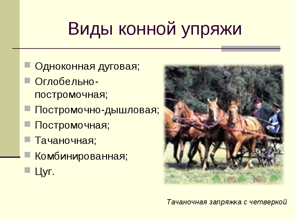 Виды конной упряжи Одноконная дуговая; Оглобельно-постромочная; Постромочно-д...