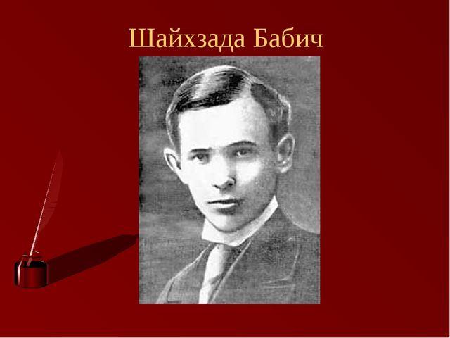 Шайхзада Бабич