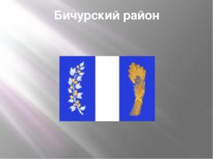 Бичурский район