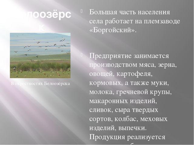 Белоозёрск (Бурятия) Большая часть населения села работает на племзаводе «Бор...