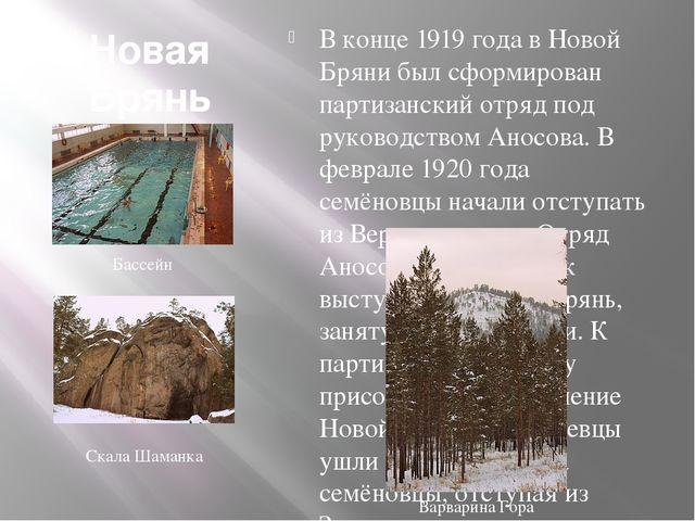 Новая Брянь В конце 1919 года в Новой Бряни был сформирован партизанский отря...