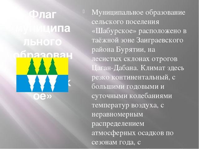 Флаг муниципального образования «Шабурское» Муниципальное образование сельско...