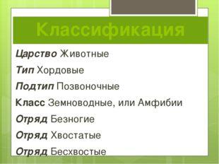 Классификация Царство Животные Тип Хордовые Подтип Позвоночные Класс Земновод