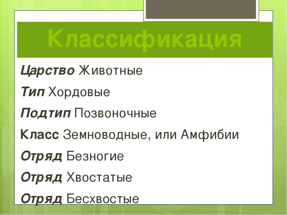 Классификация Царство Животные Тип Хордовые Подтип Позвоночные Класс Земновод...