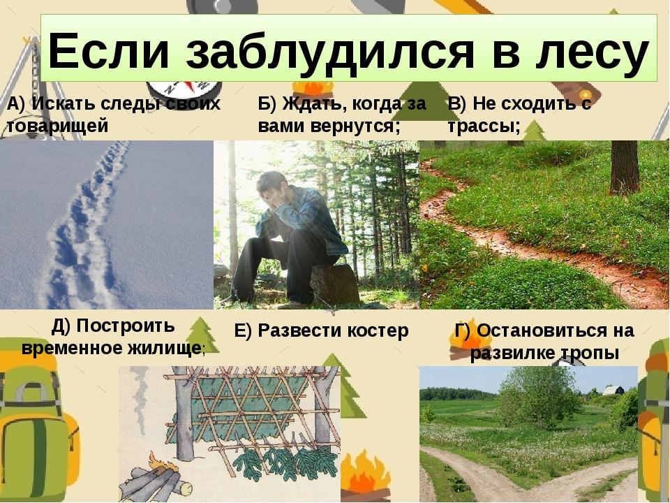 Если заблудился в лесу А) Искать следы своих товарищей Б) Ждать, когда за вам...